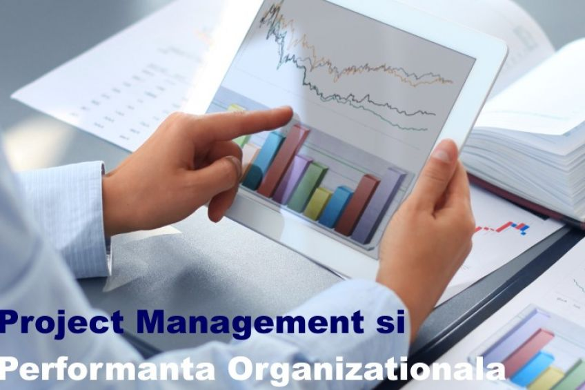 PM si performanta organizationala