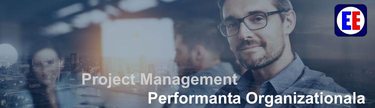 project management performanta organizatiei