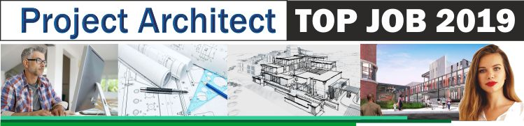 Project Architect  /  Arhitect de proiect
